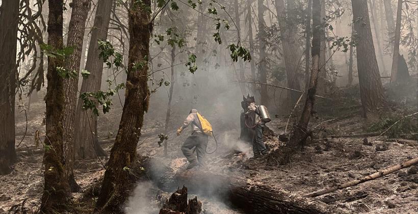 Archie Creek Fire California Lawsuit